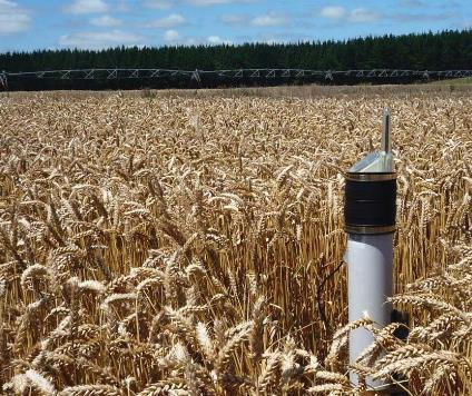 Wireless soil moisture sensor network